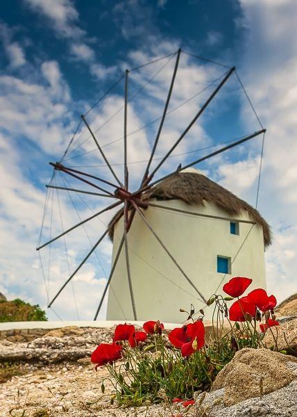 Windmill near Little Venice on Mykonos