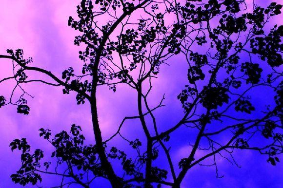 Evening sky in Glyfada