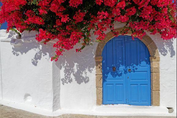A flowered house