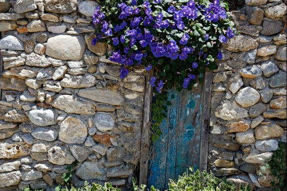 Wild flowers and old stones!