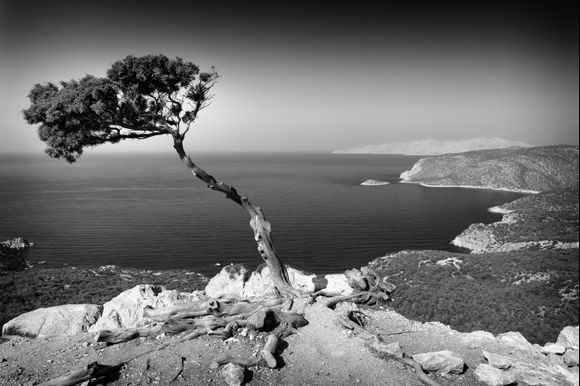 Happy end of this year and wishes of travels in Greece next year  to all!