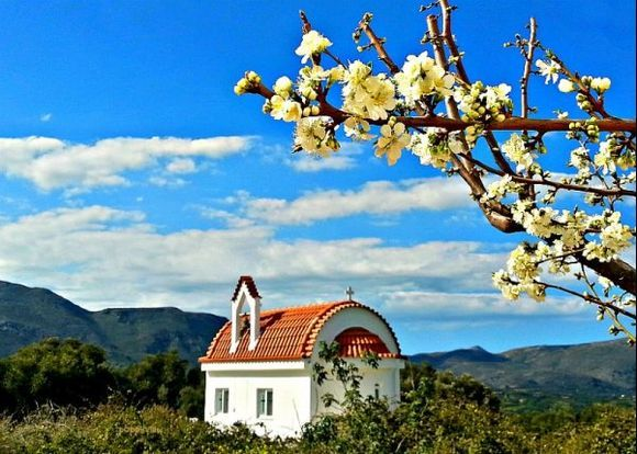 Pretty blossoms, presented to us this spring by our sole plum tree, are captured against a cloudy, Cretan sky, while, close by, the little chapel of St. Irene, remains a permanent, picturesque presence.