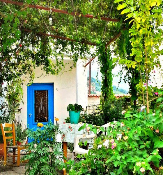 A canopy of grapevine, jasmine and trumpet flower covers this porch in the village of Fodele, Crete. Talk about curb appeal!